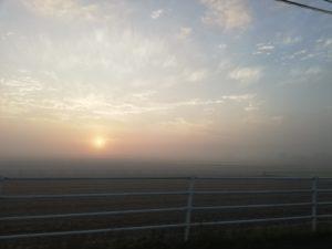 菊池の畑は、霧景色。朝市に買い物に