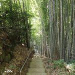 神龍八大龍王神社in菊池