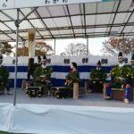 菊池菊祭り