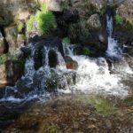 白川水源(菊池温泉♨️から、一時間)