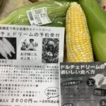 菊池から、スイーツのようなお野菜を!